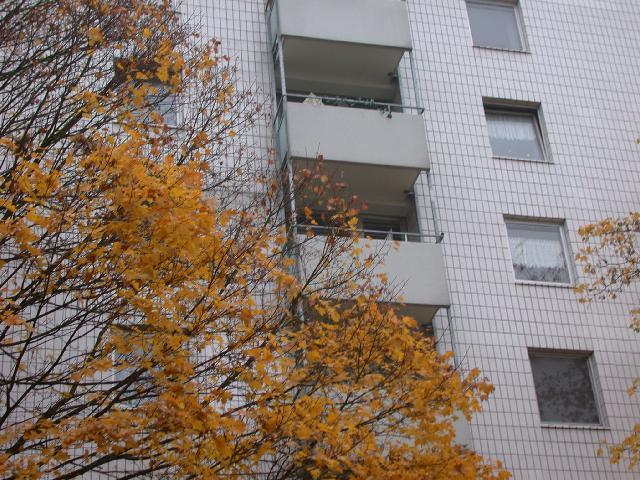 Wohnung Karlsruhe Mieten Studenten